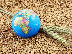 Food, Agriculture Must Play Vital Part in Reaching a Sustainable Future